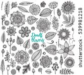 big set of hand drawn flowers ... | Shutterstock .eps vector #539981218