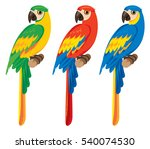 vector set of three parrots | Shutterstock .eps vector #540074530