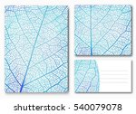 Blue Leaf Backgrounds With...