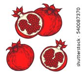 pomegranate set fruit  berry.... | Shutterstock . vector #540087370