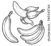 banana fruit  bunch. organic... | Shutterstock .eps vector #540143764