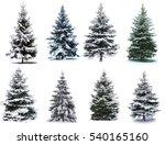 Christmas Tree Collage....