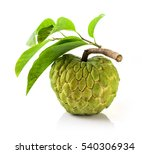 fresh custard apple with leaf...   Shutterstock . vector #540306934