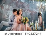 beautiful couple bride and... | Shutterstock . vector #540327244