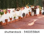decoration detail of typical...   Shutterstock . vector #540355864