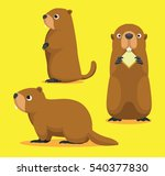 Cute Marmot Cartoon Vector...