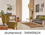 apartment with grey sofa  green ... | Shutterstock . vector #540400624