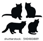 black cat vector silhouettes on ... | Shutterstock .eps vector #540483889
