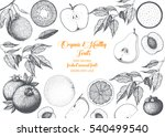 fruits top view frame. farmers... | Shutterstock .eps vector #540499540