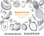 fruits top view frame with... | Shutterstock .eps vector #540499549