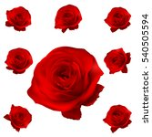 Red Roses Set Isolated On Whit...
