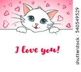 cute cat holding banner. love... | Shutterstock .eps vector #540549529