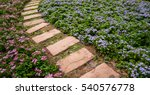 pathways in the park or flower... | Shutterstock . vector #540576778