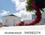 red flowers bush on the white... | Shutterstock . vector #540582274