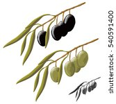 olives vector | Shutterstock .eps vector #540591400