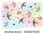 swallow in sky set | Shutterstock . vector #540607030