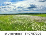 summer landscape with a field ... | Shutterstock . vector #540787303