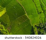 aerial panorama of the green... | Shutterstock . vector #540824026