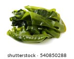 Soaked Wakame Seaweed  Japanes...