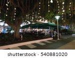 miami beach  florida   december ... | Shutterstock . vector #540881020
