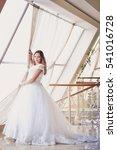 beautiful bride portrait... | Shutterstock . vector #541016728