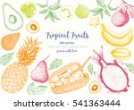 tropical fruits top view frame... | Shutterstock .eps vector #541363444