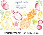 tropical fruits top view frame... | Shutterstock .eps vector #541363453
