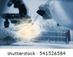 scientist with equipment and... | Shutterstock . vector #541526584