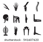orthopedic and spine icon set... | Shutterstock .eps vector #541607620