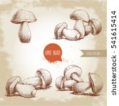hand drawn sketch style porcini ... | Shutterstock .eps vector #541615414