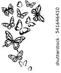 black butterflies isolated on a ... | Shutterstock .eps vector #541646410