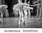 ballet dancers on stage during... | Shutterstock . vector #541659310