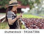 happy beautiful young caucasian ... | Shutterstock . vector #541667386