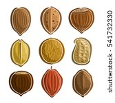 vector set nuts logo  pecan ... | Shutterstock .eps vector #541732330