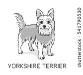 cartoon yorkshire terrier... | Shutterstock .eps vector #541790530