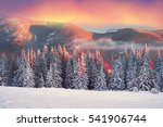 after the storm a strong frost...   Shutterstock . vector #541906744