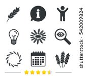 agricultural icons. gluten free ... | Shutterstock . vector #542009824