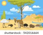 australia wild life animals... | Shutterstock .eps vector #542016664