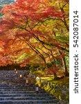 autumn in my dream japan | Shutterstock . vector #542087014