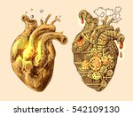 illustration of 2 hearts... | Shutterstock .eps vector #542109130