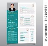 vector original minimalist cv ... | Shutterstock .eps vector #542164984