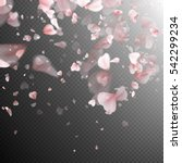 pink sakura petals background....