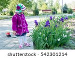 the child  a little girl in the ... | Shutterstock . vector #542301214
