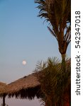Small photo of Full moon rises over straw shed, by the Amazon river, in Alter do Chao, Brazil.