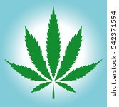 cannabis  marijuana  green leaf ...   Shutterstock . vector #542371594
