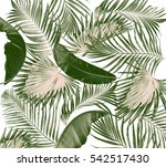 green leaves of palm tree on... | Shutterstock . vector #542517430