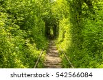 tunnel of love | Shutterstock . vector #542566084