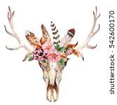 watercolor isolated deer's head ... | Shutterstock . vector #542600170