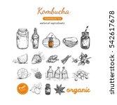 kombucha homemade tea... | Shutterstock .eps vector #542617678