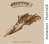 hand drawn vegetables isolated...   Shutterstock .eps vector #542651818